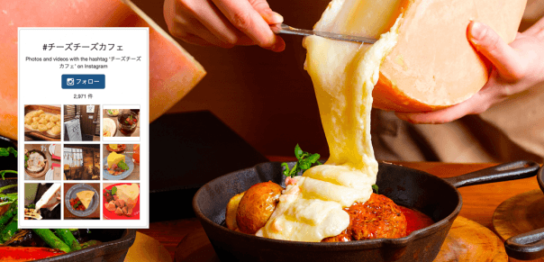 チーズ チーズ カフェ 守谷